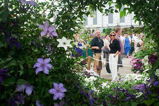 Chelsea Flower Show & Hidden London