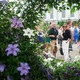 More views of Chelsea Flower Show & Hidden London